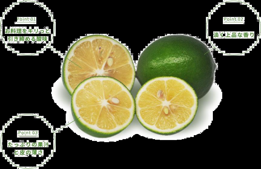 マイヤーレモンの特徴,キリッとした酸味,上品でマイルドな香り,たっぷりの果汁,たっぷりの果肉,マイヤーレモン,国産マイヤーレモン,グリーンマイヤーレモン,通販,宮城県産
